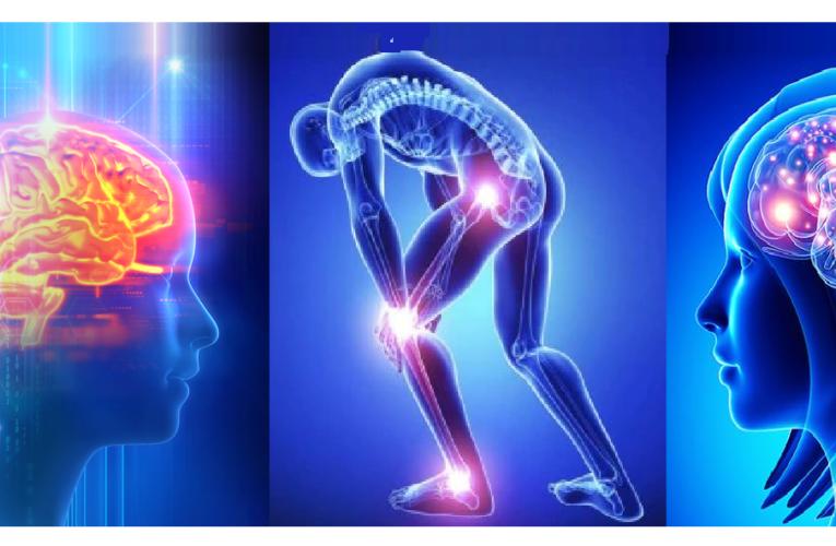 Parkinson's Disease – Causes, Sign & Symptoms, Diagnosis, Complication, Treatment & Prevention 4.8 (458)